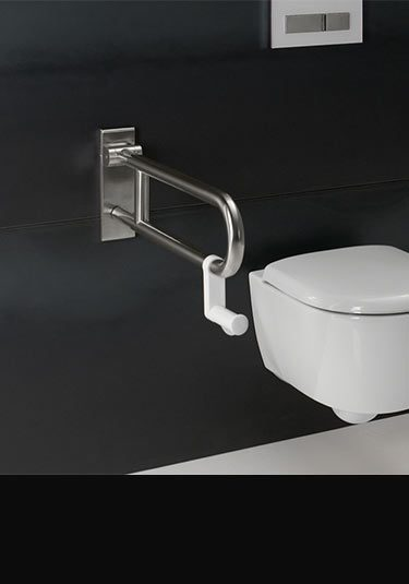 Toilet Grab Bars Amp Shower Grab Rails By Livinghouse