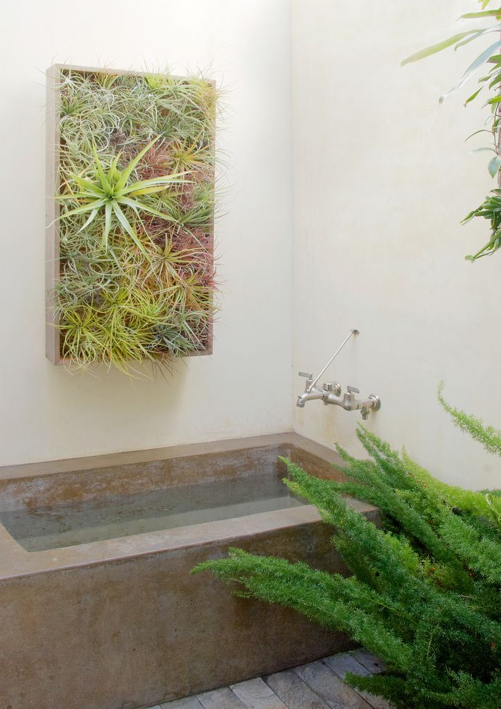 bathroom-living-wall