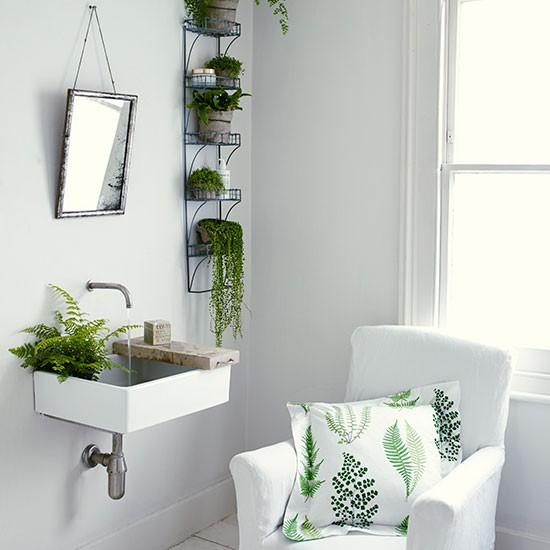 bathroom-ferns