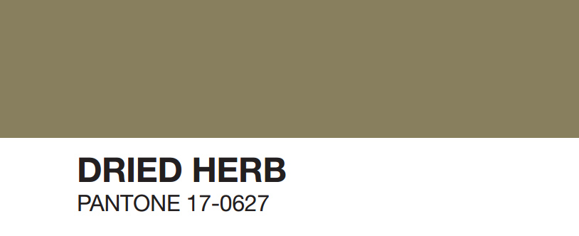dried-herb