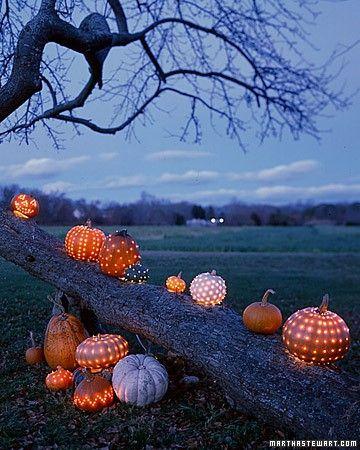 jack-o-lantern-tree
