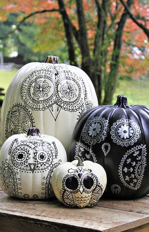owl-pumpkins